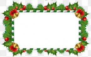 Text Box - Christmas Tree Text Box PNG