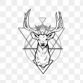 Geometric Shapes - White-tailed Deer Reindeer Antler Drawing PNG