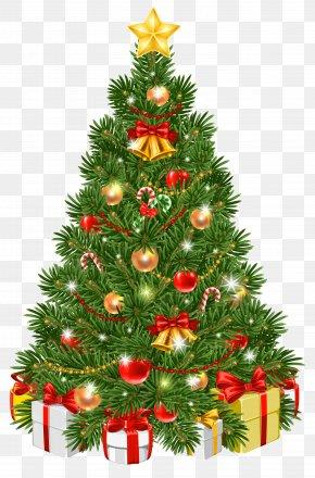 Decorated Christmas Tree Transparent Clip Art Image - Christmas Tree Christmas Day Christmas Ornament Clip Art PNG