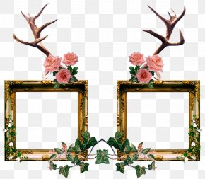 Abscure Poster - Picture Frames Clip Art Image Ornament Daum Crystal Roses Small Frame PNG