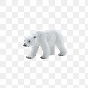 Polar Bear - Polar Bear American Black Bear Tiger Leopard PNG