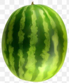 Trees - Watermelon Fruit Clip Art PNG
