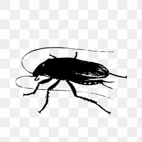 Graphics Cockroach Template - Puzzle Android Application Package Download Computer File PNG