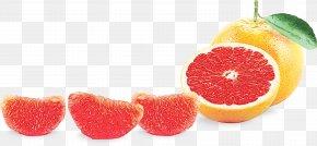 Bitter Orange Tangerine - Fruit Juice PNG
