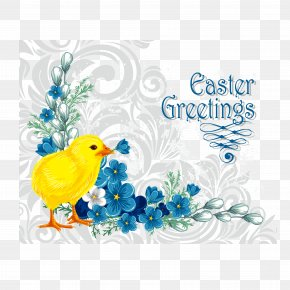 Easter Chicken Vector - Flower Picture Frame Clip Art PNG
