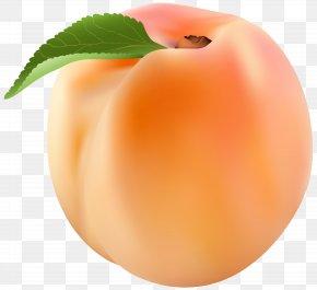 Peach Clip Art Image - Peach Clip Art PNG