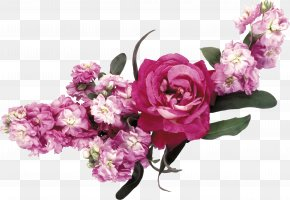 Flower Crown - Flower Garden Roses Pink PNG