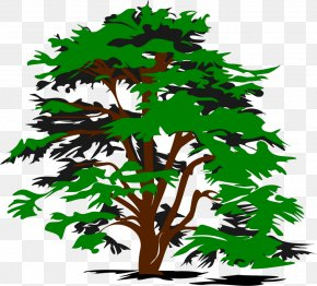 Trees - Tree Black And White Clip Art PNG