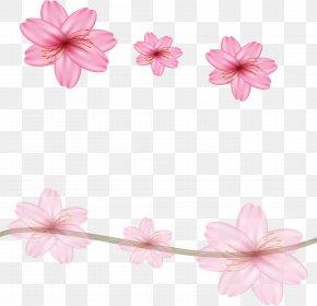 Pink Dream Sakura Border - Floral Design Cherry Blossom Flower PNG