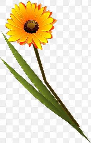 Gerbera - Flower Lds Clip Art Clip Art PNG
