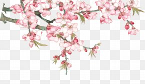 Watercolor Peach Blossom Peach Tree - Download Pixel PNG