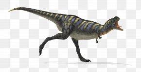 Dinosaur - Dinosaur Velociraptor PNG