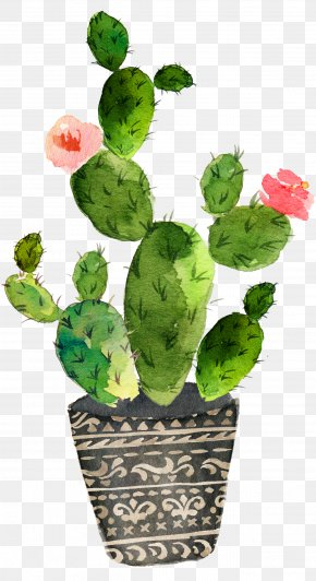 Green Prickly Pear Cactus Bloom - Cactaceae Watercolor Painting Art Drawing PNG