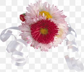 Chrysanthemum - Festival Of The Flowers South Korea Floral Design PNG