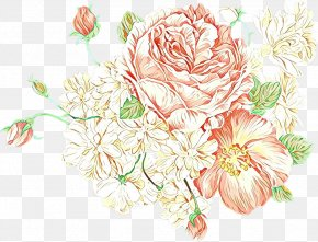 Floristry Rose Family - Bouquet Of Flowers Drawing PNG