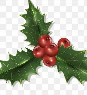 Christmas Plant Decorations - Christmas Decoration Holly PNG