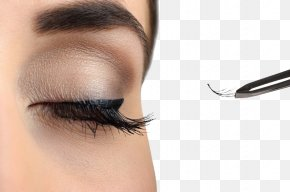 Long Eyelashes Beauty - Eyelash Extensions Comb Cosmetics Hair PNG