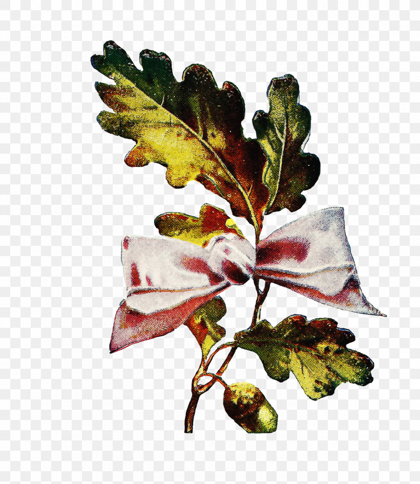 Flower Leaf Plant Branch Tree, PNG, 1387x1600px, Flower, Arctostaphylos, Barberry Family, Branch, Bud Download Free