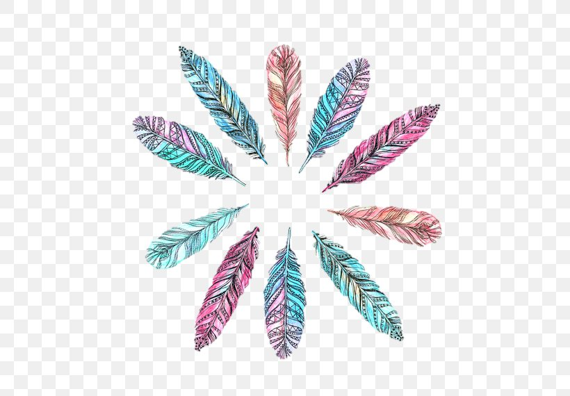 Desktop Wallpaper Feather Drawing Png 500x570px Feather Chart