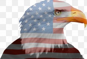 Cap Falconiformes - Veterans Day American Flag PNG