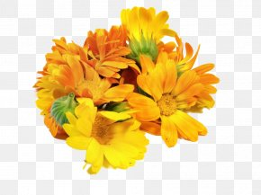 A Bunch Of Marigolds - Mexican Marigold Floral Design Flower Calendula Officinalis PNG
