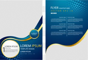 Vector Curve Circle Business Flyer - Flyer Poster Advertising Brochure PNG