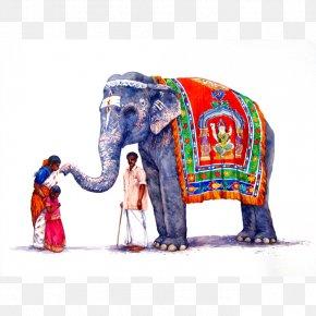 Watercolor Elephant - Art Museum Elephant Canvas Print Artist PNG