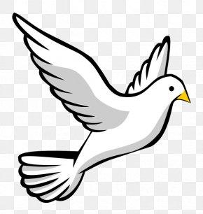 Dove Cliparts - Bird Flight Clip Art PNG