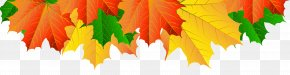 Fall Leaves Border Clip Art Image - Image File Formats Lossless Compression PNG