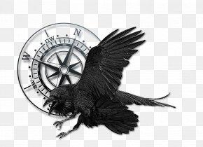 Raven - Bird Common Raven Book The Backwoodsman Magazine Television Show PNG