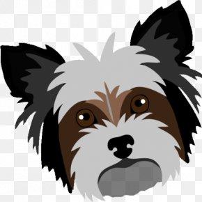 Puppy - Yorkshire Terrier Cairn Terrier Puppy Shih Tzu Dog Breed PNG