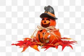 Maple Pumpkin - Halloween Spooktacular Trick-or-treating IFixZone Smart Phone Repair October 31 PNG