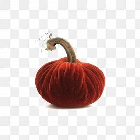 Pumpkin - Pumpkin Thanksgiving Holiday Centrepiece Gift PNG