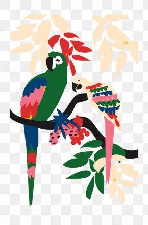Cartoon Color Parrot - Brazil Graphic Design Work Of Art Illustrator Illustration PNG