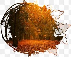 Landscape Painting - Autumn Summer Blog PNG
