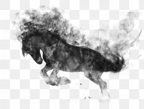 Horse - Horse Gait Dog Breed PNG
