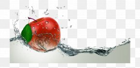 The Apple Falls In The Water - Stock Photography Health, Fitness And Wellness Physician Skincare Centre Royalty-free PNG