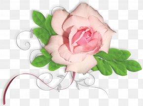 Flower Painting Floral Design Material - Garden Roses Floral Design Flower PNG