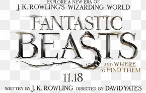 Harry Potter - Fantastic Beasts And Where To Find Them Film Series Newt Scamander Jacob Kowalski Harry Potter PNG
