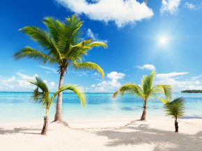 Beach Download - Beach Wallpaper PNG