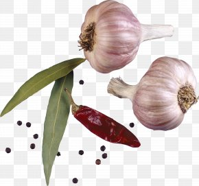 Garlic Seasoning Spices PNG