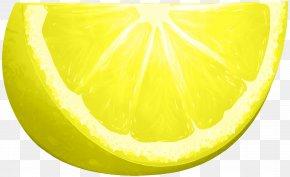 Lemon Slice Clip Art Image - Sweet Lemon Citron Grapefruit Lime PNG