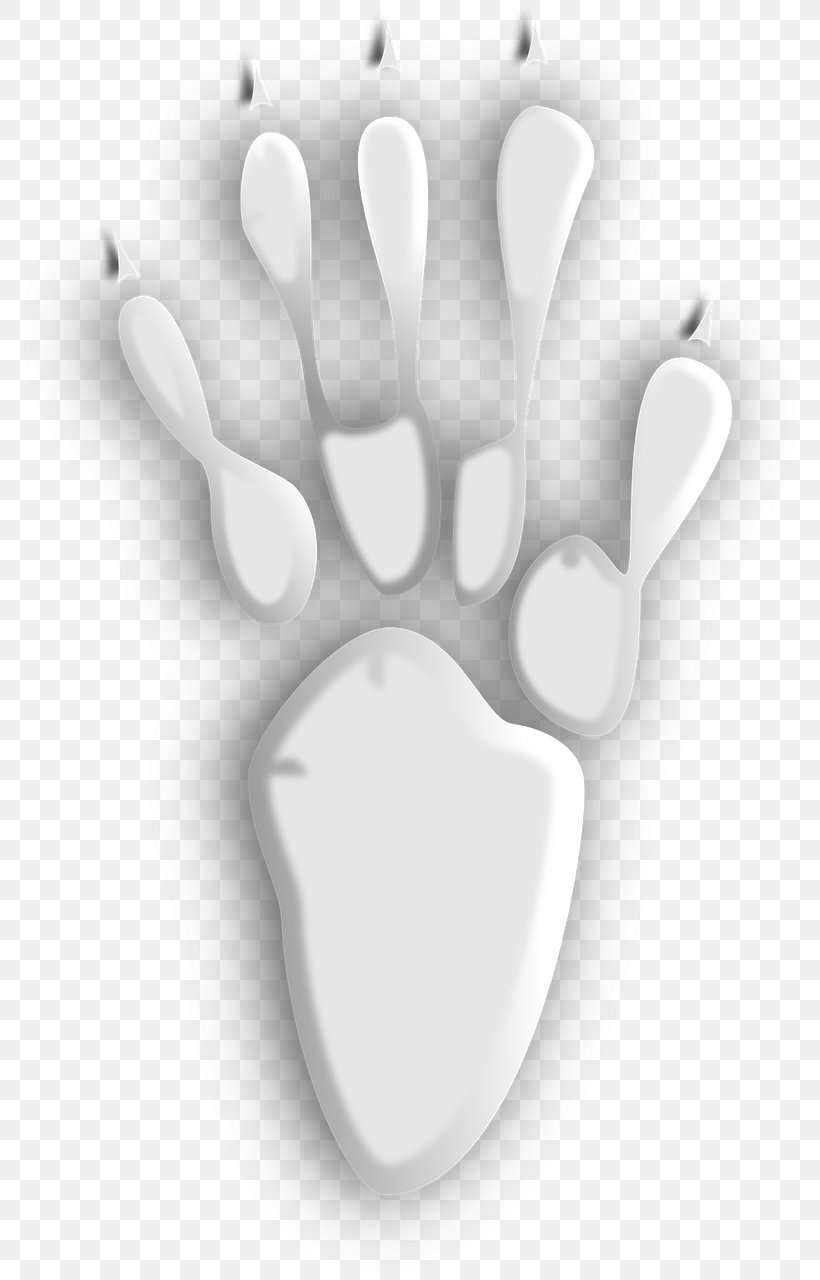 Bear Footprint Animal Track Clip Art, PNG, 793x1280px, Bear, Animal, Animal Print, Animal Track, Black And White Download Free