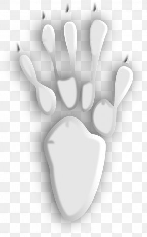 White Sharp Animal Footprints - Bear Footprint Animal Track Clip Art PNG