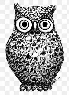 Owl - Owl Drawing Art Coloring Book PNG