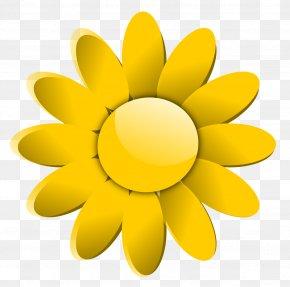 1 - Flower Common Daisy Clip Art PNG