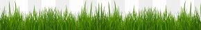 Grass Cliparts - French Bulldog Black Raspberry Bramble PNG