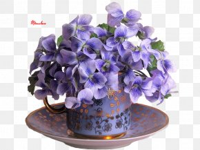 Flower - Flower Pictorial Carpet Floral Design Vase Machine-Woven Carpet PNG