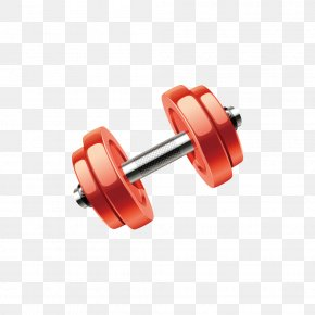 Creative Dumbbell - Dumbbell Physical Fitness Olympic Weightlifting Bodybuilding PNG