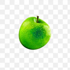 Fruit, Apple, Creative Image - Macintosh Apple Icon Image Format Apple Icon Image Format Icon PNG